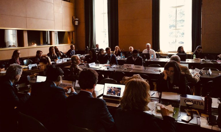 29-31 January 2019 | 24th session of the UNECE Committee on Environmental Policy (CEP)